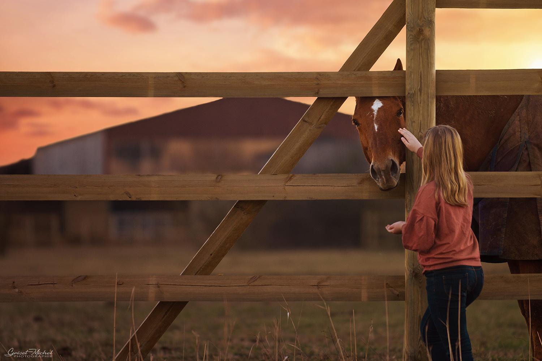 une petite fille qui caresse un cheval avec un soleil couchant a selestat