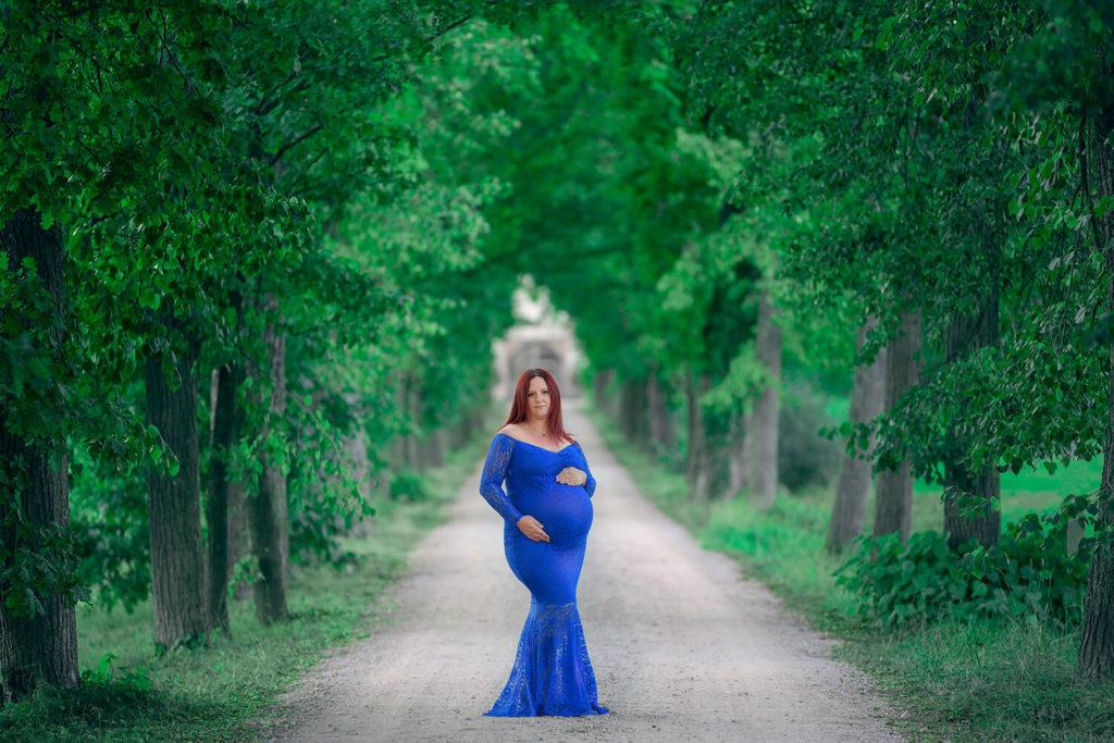 une femme pendant sa grossesse avec une robe bleu dans une allee d arbres devant un chateau